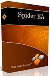 скачать бесплатно Форекс советник Spider EA